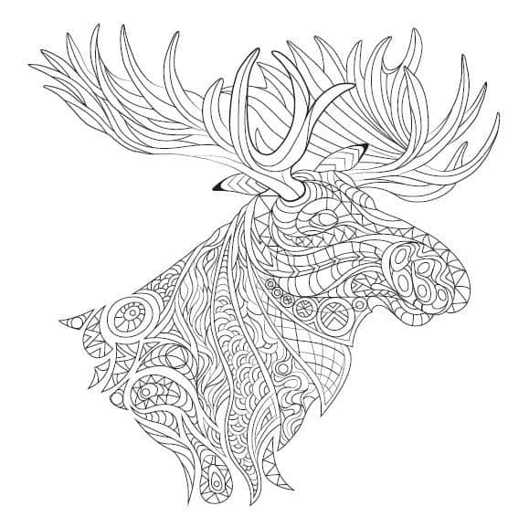 Cool Coloring Pages 6 Free Printable Images From The
